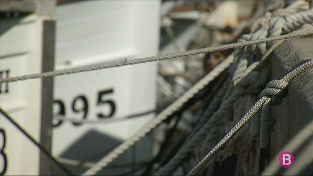 Pesca+instal%C2%B7la+%26%238216%3Bcaixes+verdes%27+a+10+embarcacions+d%27arts+menors+de+la+Col%C3%B2nia+de+Sant+jordi