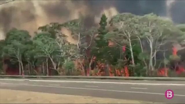 8+morts+i+vuit-centes+cases+destrossades+a+causa+dels+incendis+a+Austr%C3%A0lia