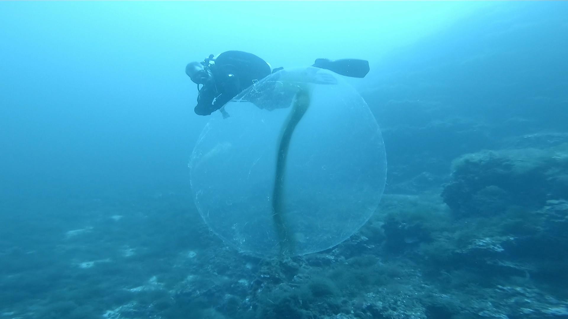 La+ci%C3%A8ncia+ciutadana+ajuda+a+resoldre+el+misteri+de+les+esferes+submarines