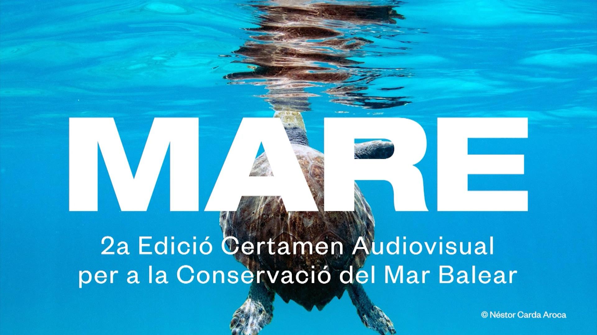 Certamen+Mare%3A+veure+dins+la+mar+per+aprendre+a+tenir-ne+cura