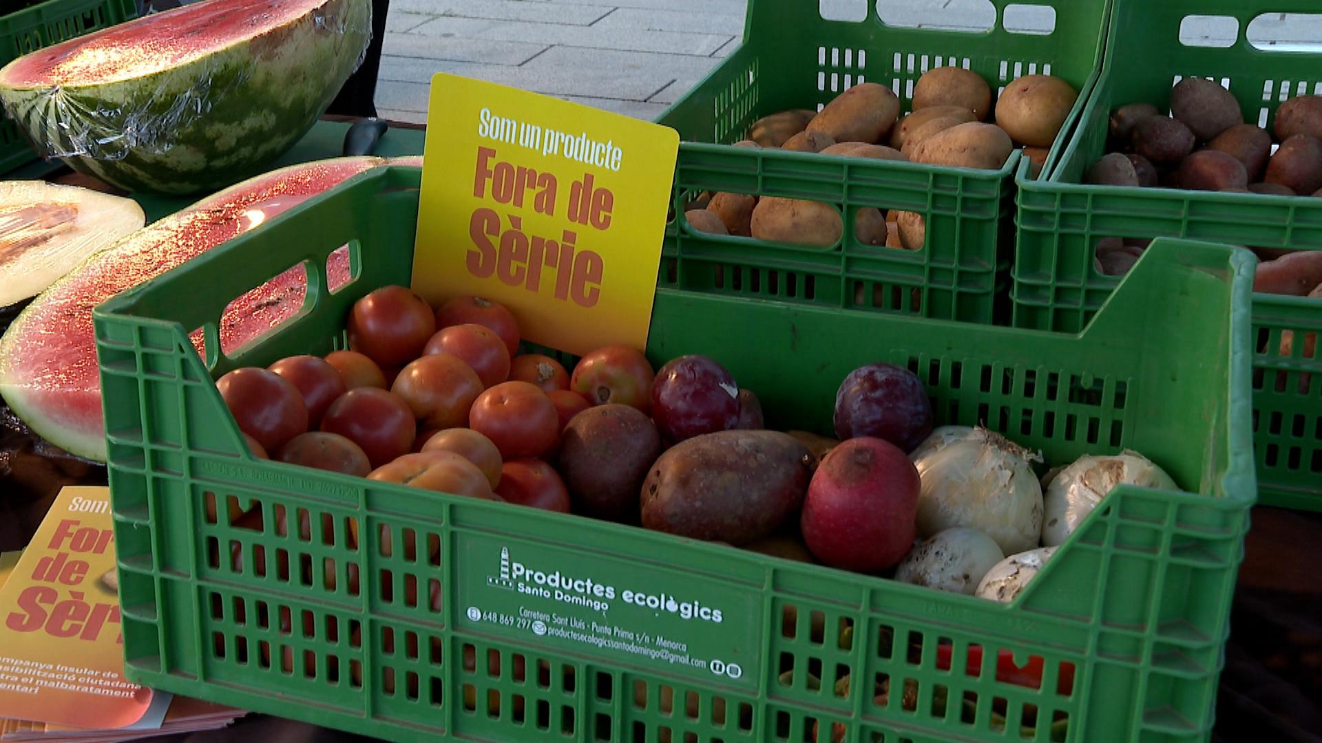 Cada+any+es+desaprofiten+a+Menorca+prop+de+12.000+tones+d%26apos%3Baliments%2C+la+majoria+productes+frescos