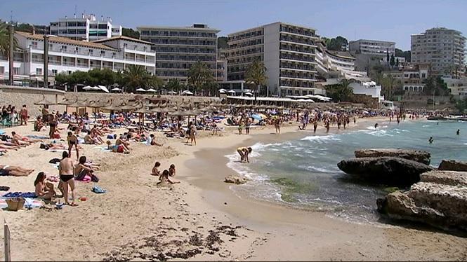 La+platja+de+Cala+Major+torna+a+obrir-se+en+no+trobar+cap+perill+de+pres%C3%A8ncia+de+carabel.la+portuguesa