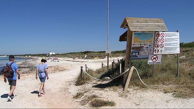 Foment+del+Turisme+de+Mallorca+lamenta+que+es+Trenc+i+ses+Covetes+estiguin+sense+serveis