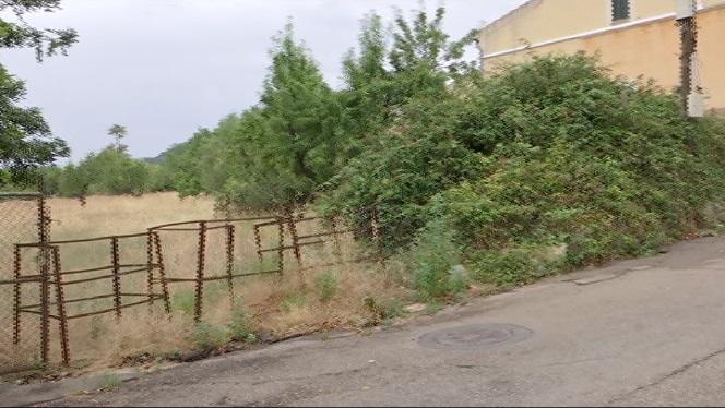 El+ple+de+Selva+aprova+la+compra+dels+terrenys+per+a+la+nova+escola+de+Caimari