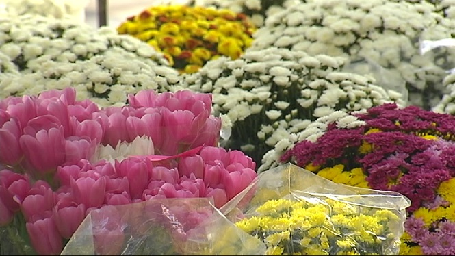 Balan%C3%A7+positiu+en+les+vendes+de+flors+per+Tots+Sants