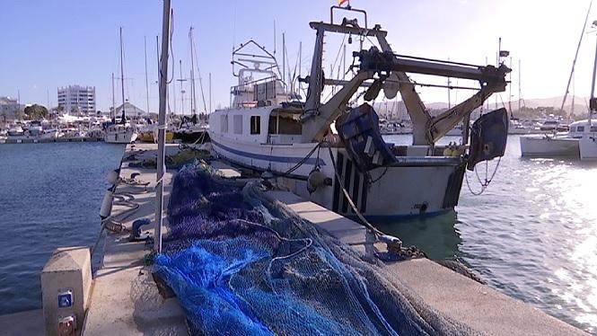 La+ponentada+deixa+la+flota+pesquera+piti%C3%BCsa+amarrada+a+port