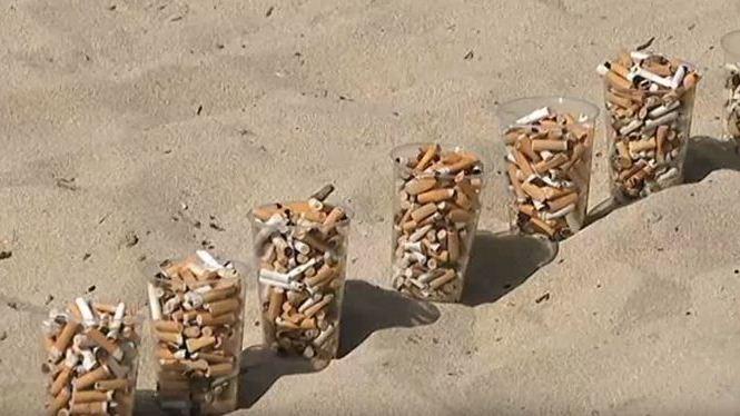 5.000+llosques+recollides+a+la+platja+en+nom%C3%A9s+un+demat%C3%AD