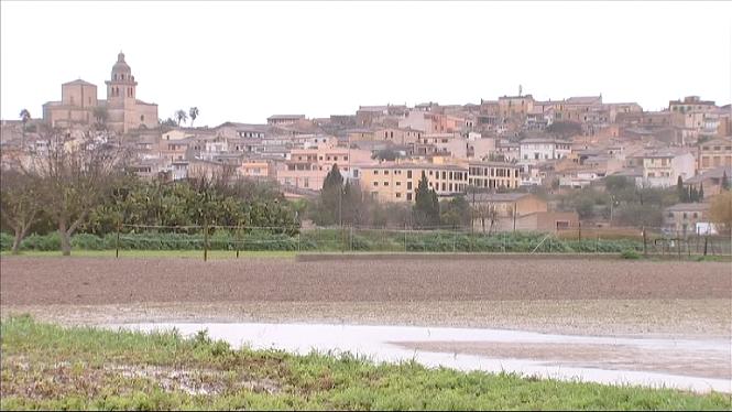 El+Pla+de+Mallorca+torna+a+patir+per+mor+de+les+pluges