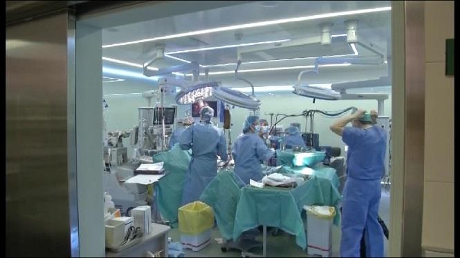 Els+cirurgians+pl%C3%A0stics+de+les+Illes+s%27organitzen+contra+l%27intrusisme