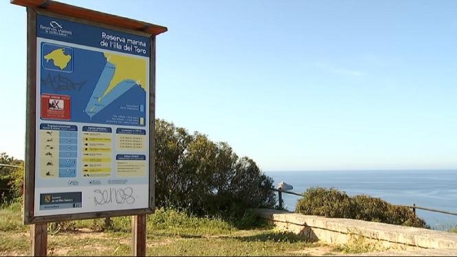 La+reserva+marina+del+Toro%2C+la+mes+rica+del+Mediterrani+espanyol