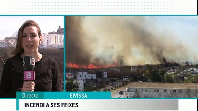 Declarat+un+incendi+a+la+zona+de+Ses+Feixes+a+Eivissa