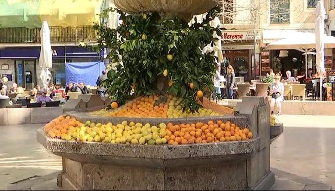 Bona+anyada+per+a+la+taronja+de+S%C3%B3ller