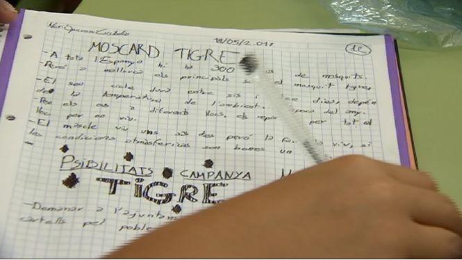Alumnes+d%27una+escola+d%27Esporles+estudien+com+combatre+el+moscard+tigre