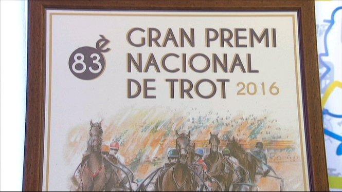 Sortejats+a+l%27Hip%C3%B2drom+de+Son+Pardo+els+dorsals+per+al+Gran+Premi+Nacional+de+Trot