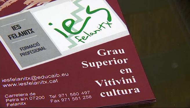 Presenten+els+estudis+de+vitivinicultura+que+s%27impartiran+a+l%27IES+de+Felanitx