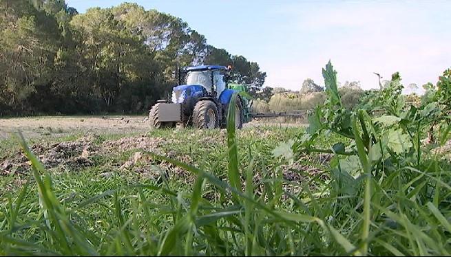 Preocupaci%C3%B3+dels+pagesos+del+Pla+de+Mallorca+per+les+ZEPA